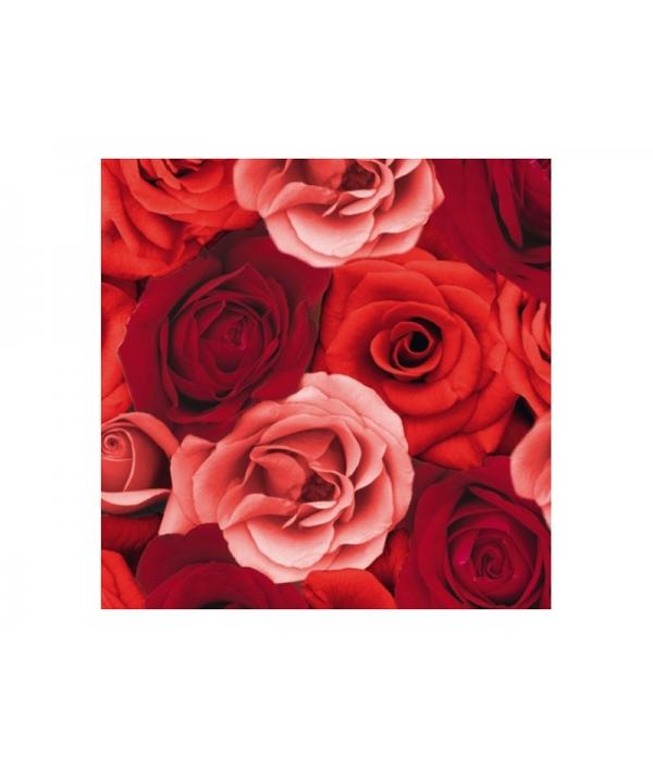 12 X Serviette Avec Dessin De Roses Rouge 40 Cm