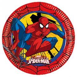 """Grandes assiettes anniversaire """"Spider Man"""""""