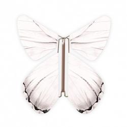10 x papillon magique blanc