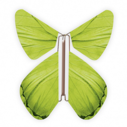 10 x papillon magique vert