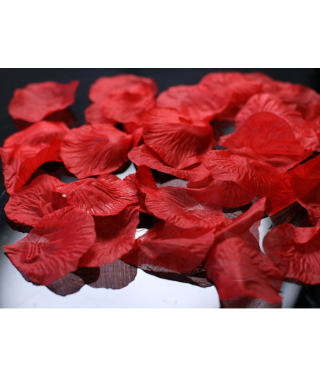 100 x p tale de rose rouge. Black Bedroom Furniture Sets. Home Design Ideas